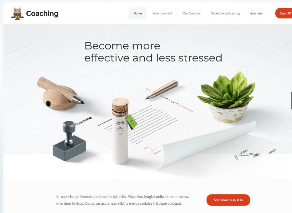 Coaching website